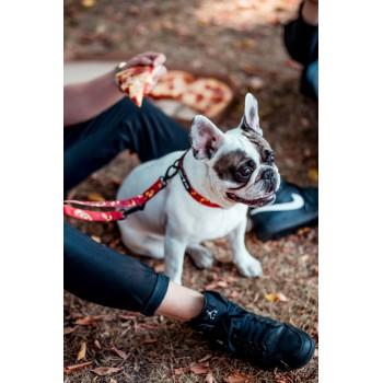 Lolek w kolekcji PIZZA marki Dobry Pies