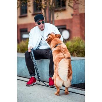 Baloo w kolekcji KAKTUSOWO marki Dobry Pies