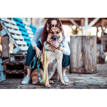 Sara w kolekcji FLORA marki Dobry Pies