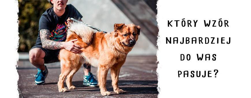 Zestawy oryginalnych obroży i smyczy dla psów